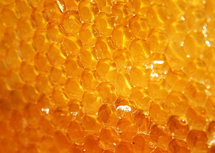 bioactive Honey in comb